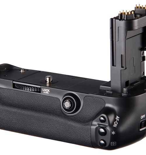 battery grip canon 5D 1